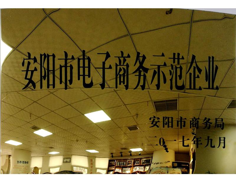 安阳市电子商务示范企业