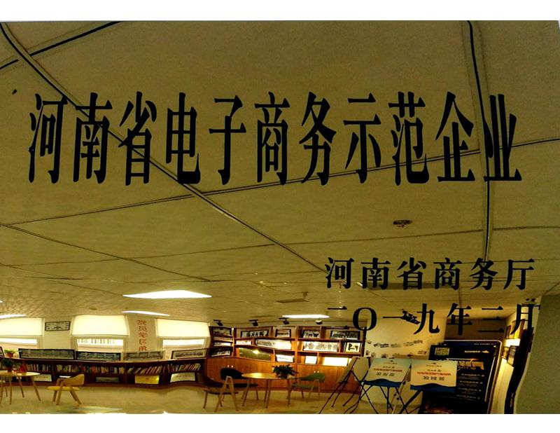 河南省电子商务示范企业